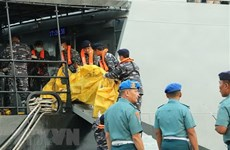Indonesia to investigate Lion Air after deadly plane crash