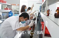 VietnamWorks: Recruitment demand expected to rise next year