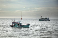 Ca Mau encourages fishing vessels to install monitoring devices