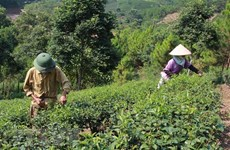 Vietnam targets effective ODA use, management