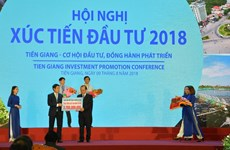 Tien Giang: Number of new enterprises surges