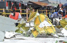 Indonesia stops search for Lion Air crash victims