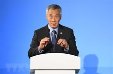 Singapore might hold early election next year: PM