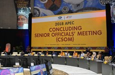 Vietnam takes part in 2018 APEC CSOM in Papua New Guinea