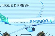 Aviation business licence granted to Bamboo Airways