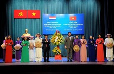 Vietnam-Netherlands diplomatic ties anniversary marked