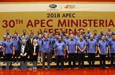 Deputy PM Pham Binh Minh busy at APEC meeting