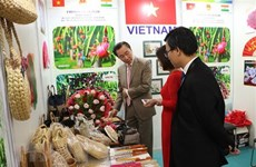 Vietnamese businesses showcase products at Indian fair