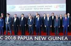 APEC leaders focus on discussing free trade