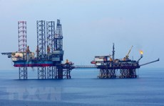 PTSC to supply floating storage for Sao Vang - Dai Nguyet gas project
