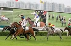 Hanoi to build 500 million USD horse racing track