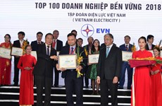 "EVN enters ""sustainable enterprises"" list in 2018"