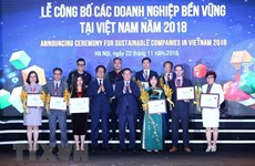 Vietnam announces top 100 sustainable enterprises in 2018