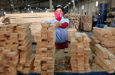 Wood exports expected to hit 8.85 billion USD this year