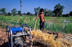 ADB helps improve Vietnam's irrigation systems