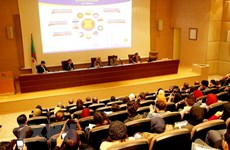 Vietnam attends workshop on ASEAN in Algeria