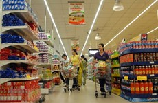 Retail sales, services earn 172 billion USD in 11 months