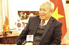 Visit to plan for future of Vietnam-RoK ties: ambassador