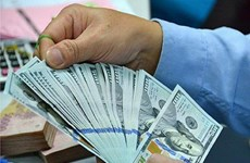 Reference exchange rate up 5 VND on week's first day