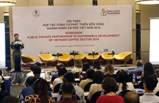 PPPs urged to develop coffee sector sustainably