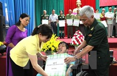 Association aims to raise 1 trillion VND for AO victims in five years