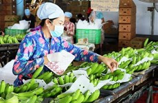 Vietnam spends 1.57 billion USD on fruit, vegetables in 11 months