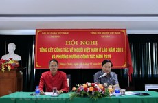 Vietnamese nationals in Laos promote solidarity