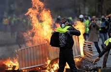 No Vietnamese affected in recent France protests