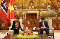 Norway willing to share experience in clean energy development with Hanoi