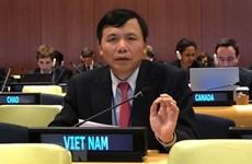Ambassador underlines necessity of fostering UN ties with regional organisations