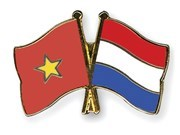 Vietnamese SMEs offered chance to learn from senior Dutch experts