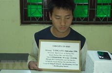 Heroin trafficker arrested in northern border Dien Bien province