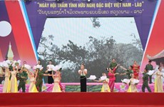 Festival celebrates Vietnam-Laos special friendship