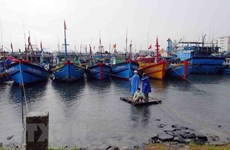 Kien Giang announces list of violating fishing vessels