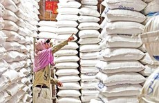 Cambodia suffers 13 percent drop in 11-month rice exports