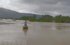 Floods kill six, submerge over 10,100 houses in Binh Dinh