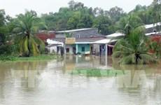Torrential rains wreak havoc on Quang Nam
