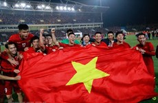 Malaysian media comment on Vietnam's football victory