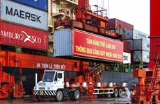 Quy Nhon Port handles record volume of cargo