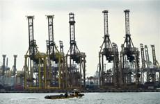 Singapore's November exports sharply fall