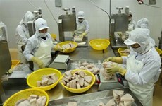 Vietnam moves to develop responsible fishery industry