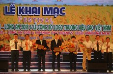 Third Vietnam Rice Festival kicks off