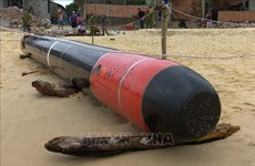 Torpedo removed from sea off Khanh Hoa province