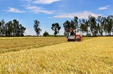 Experts make proposals towards sustainable agricultural production