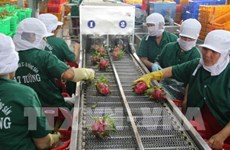 Tien Giang province's export turnover hits 2.7 billion USD
