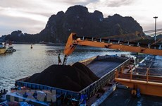 Mining group looks to higher revenue in 2019