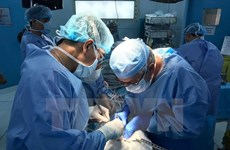 Organ transplantation makes giant leap in 2018