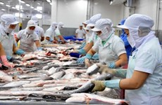 Vietnam targets 10 billion USD from aquatic product exports in 2019