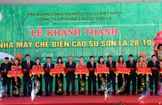 Rubber latex processing plant inaugurated in Son La
