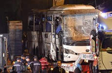Travel agents asked to ensure tourist safety in Egypt